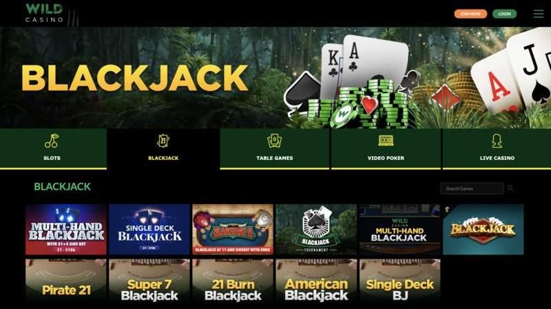 Wild Casino Blackjack Games